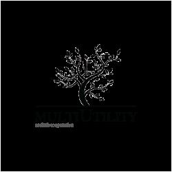 multiutility-logo-baldo-11